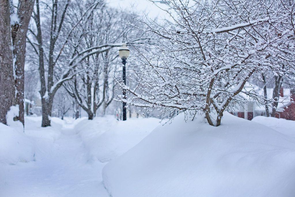 Oakland County, MI Winter